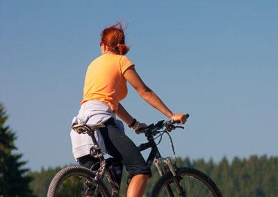 Cyklistika na Lipně