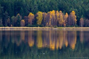 Lipenský podzim