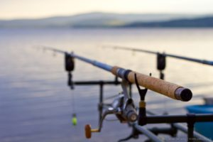 Rybaření Lipno