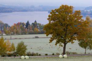 Podzim u Pihlova