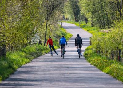Nová cyklostezka v Horní Plané